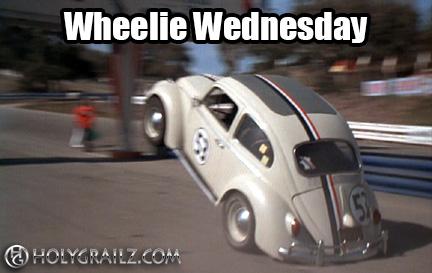 wheelie-bug-meme.jpg